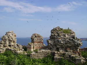 Уникални находки откриха на остров Свети Иван 1