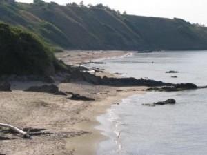 МРРБ обяви нов търг за 7 плажа по южното черноморие 1