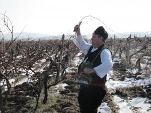 В община Созопол отпразнуваха Трифон Зарезан 1