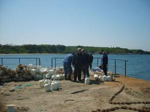 Черни миди чистят водата в залива Вромос 3