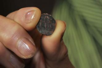 Уникалната монета на Иван Шишман открита преди дни в Созопол 2