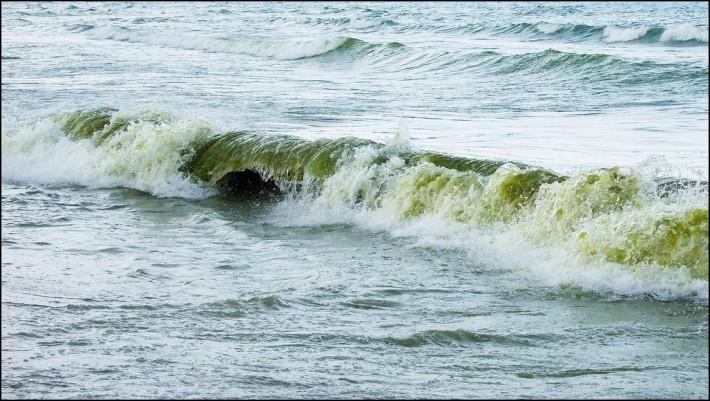 Post image for Елица Ангелова – Море, море …