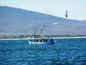 Кораби, рибарски лодки и яхти излязоха в морето на Никулден в Созопол